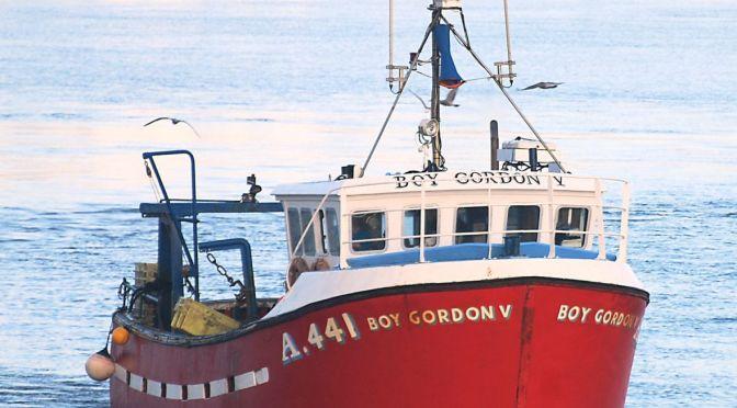 Spring 2015: Extreme Fishing